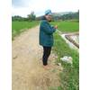 meilani22 - Sribulancer