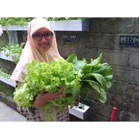 Siti Fatimah Tri Prasetyowati - sribulancer
