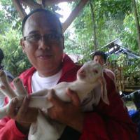 Bambang Sudiyono - sribulancer