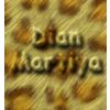 dianmartiya - Sribulancer